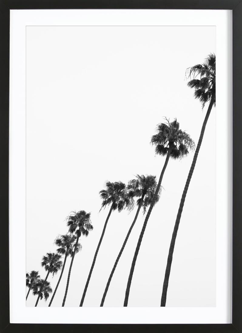 Cali Palms - Framed Premium Poster Portrait