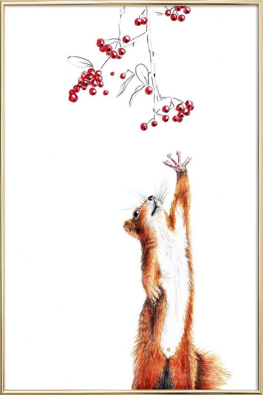 Squirrel als Premium Poster von Janine Sommer   JUNIQE