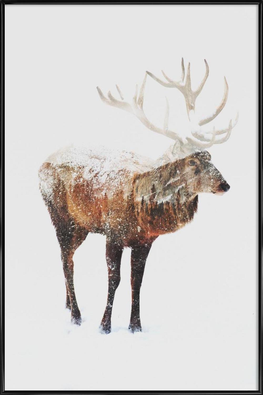 Arctic Deer als Poster im Holzrahmen von Andreas Lie | JUNIQE