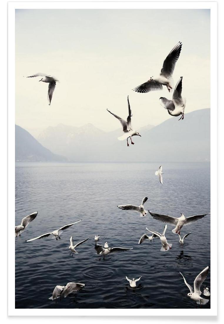 Seagulls - Premium Poster Portrait