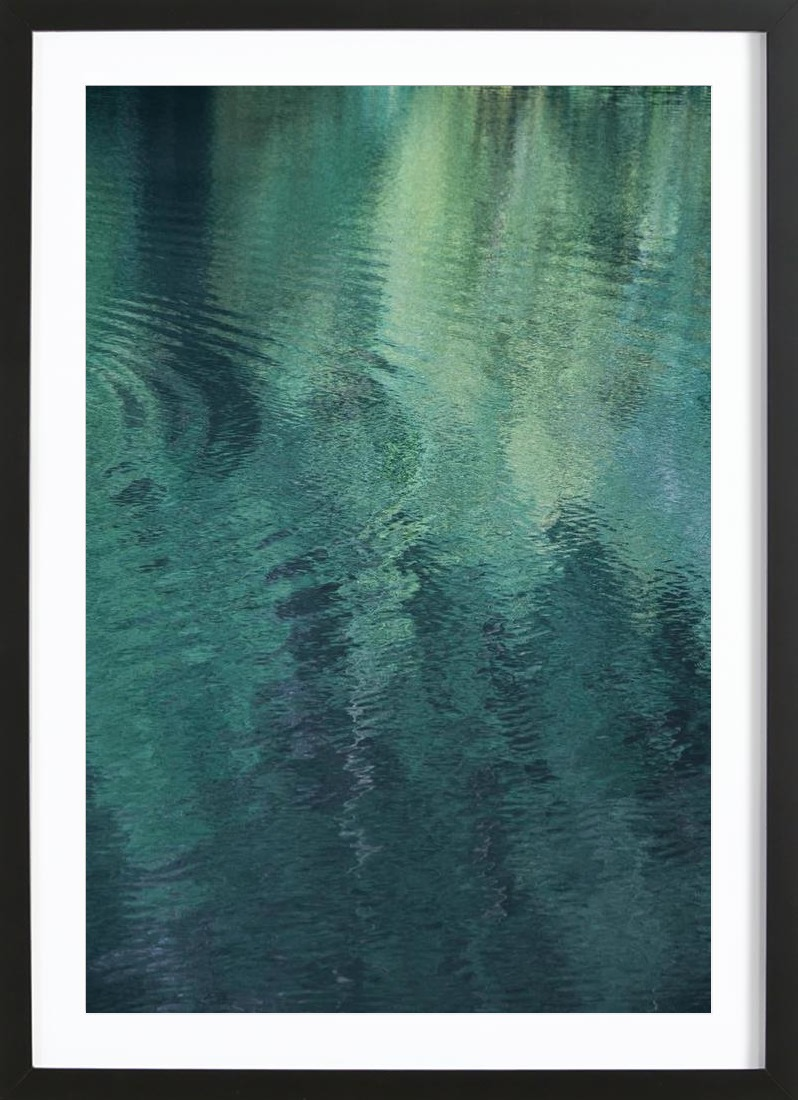 Forest In The Lake - Framed Premium Poster Portrait