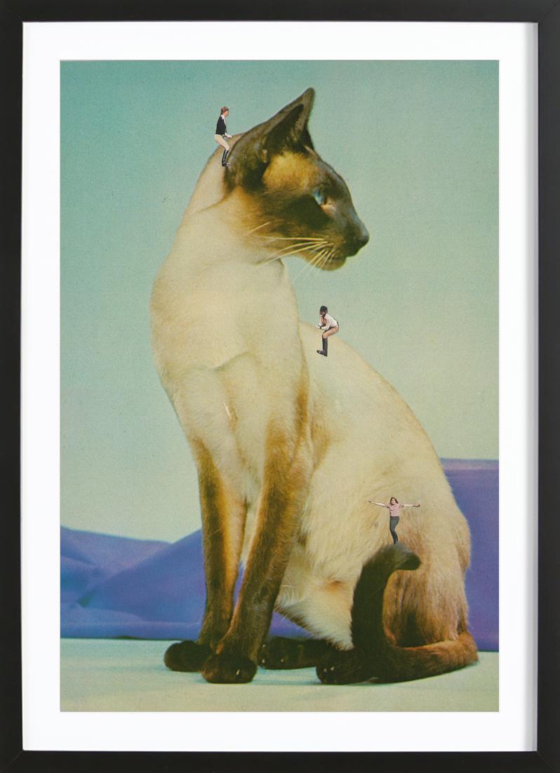 Siamese Mega Cat as Greeting Card Set by Megan Archer | JUNIQE
