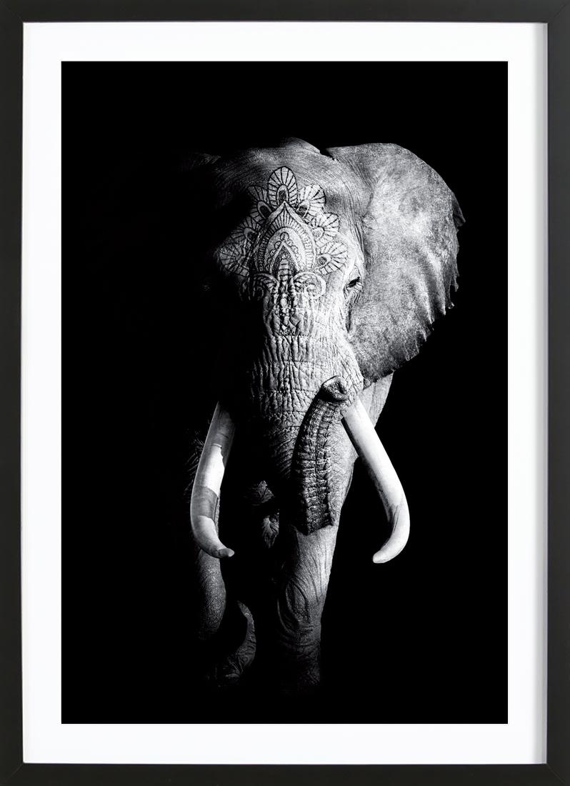 Dark Elephant als Poster im Holzrahmen von Wouter Rikken | JUNIQE