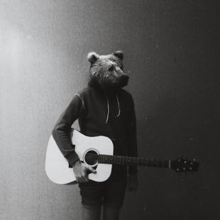 Animals in my room - Bear