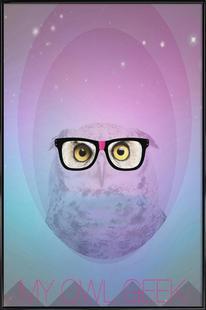 My Owl Geek