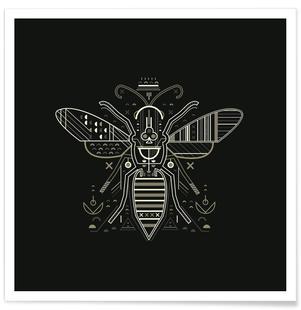 Zenith Wasp