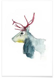 Reindeer 3