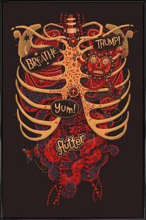 Anatomical Study