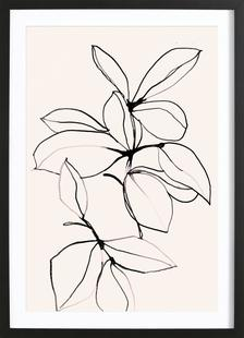 Foliage 0118