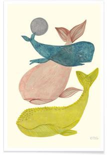It´s Raining Whales II