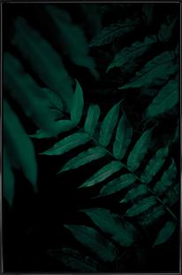 Dark Leaves 2
