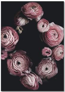 Bloomin Geometry