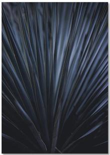 Blue Straws 2