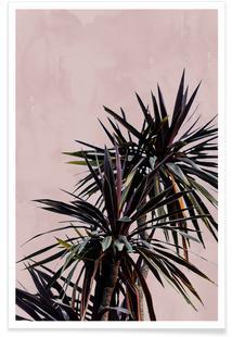 Palm Leaves 17