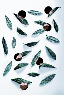 Leaves And Dots