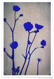 Blue Silhouettes