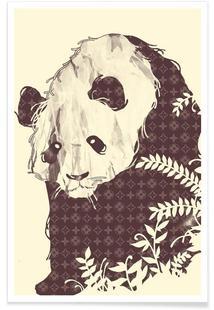 New Brand Panda