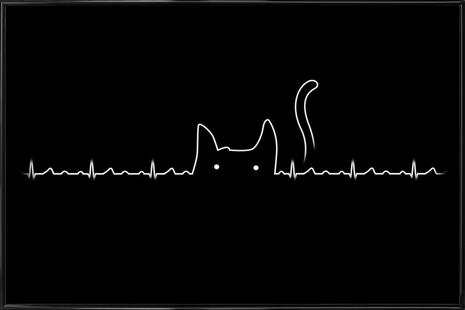 There is a cat in my heart