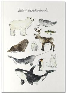 Arctic and Antarctic Animals