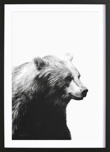 Calm Black and White