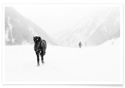 Winter Tag 15
