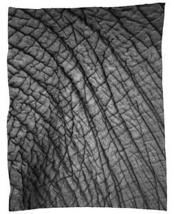 Nambithi Elephant 02