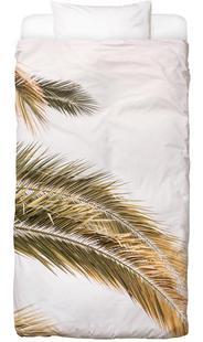 Oasis Palm 2