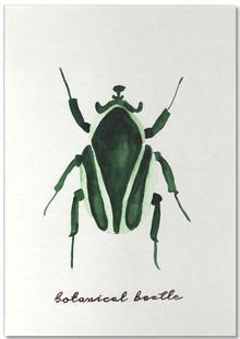 Botanical Beetle