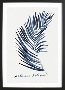 Palmam Folium