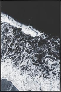 Sea Lace