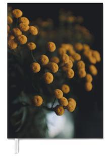 Mustard Yellow Flowers