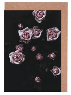 Velvet Rose Pink