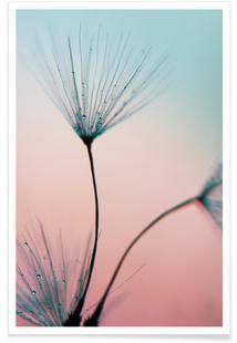 Sprinkles Of Love