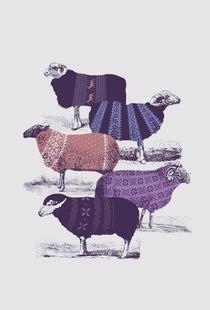 Cool Sweaters