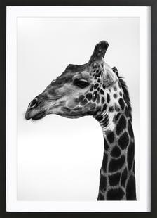 Giraph