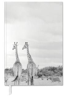 Giraph couple