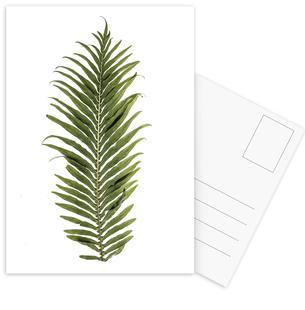 Leaf Study 1