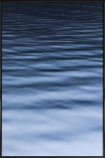 Sea Silk