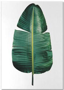 Classic Botanical Leaves 09