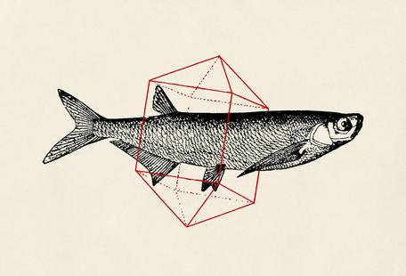 Fish in Geometrics II
