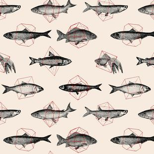Fishes in Geometrics