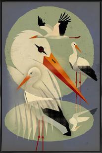 Storcks