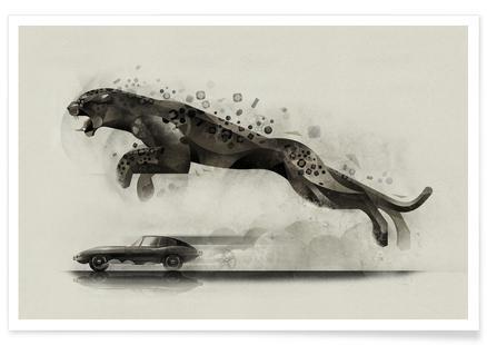Jaguar 03