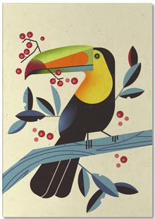 Toucan II