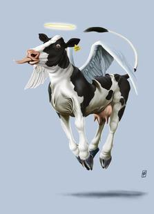 Holy Cow (Colour)