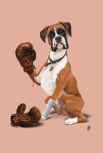The Boxer (Colour)