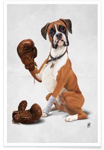 The Boxer (Wordless)