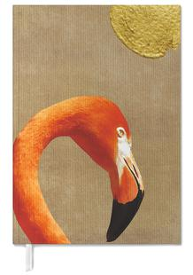 Flamingo Awakening