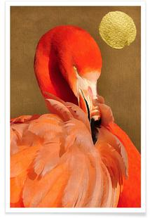 Flamingo with Golden Sun