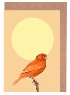 Japanischer Sonnenvogel